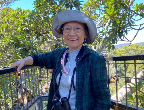 The first 100-hectare sponsorship came from Taiwan, not South Africa – featuring Lucia Liu Severinghaus